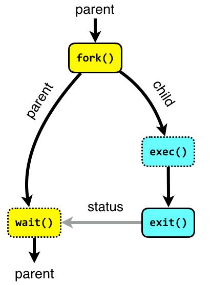 fork-exec-exit-wait